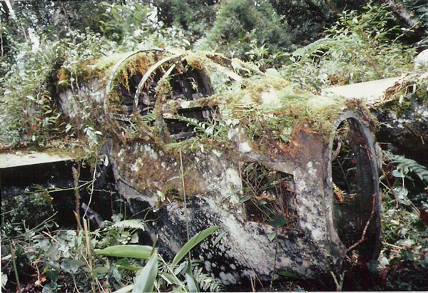 the P-61 wreck atop Mt. Cyclops